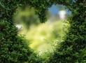 Le chalet de jardin : une pièce en plus à moindre coût